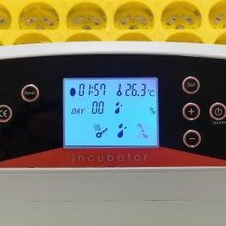 Инкубатор для яиц автоматический И-32_1